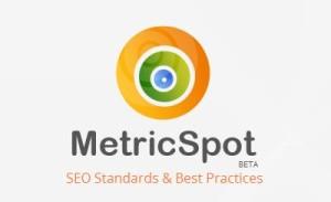 MetricSpot Análisis Web